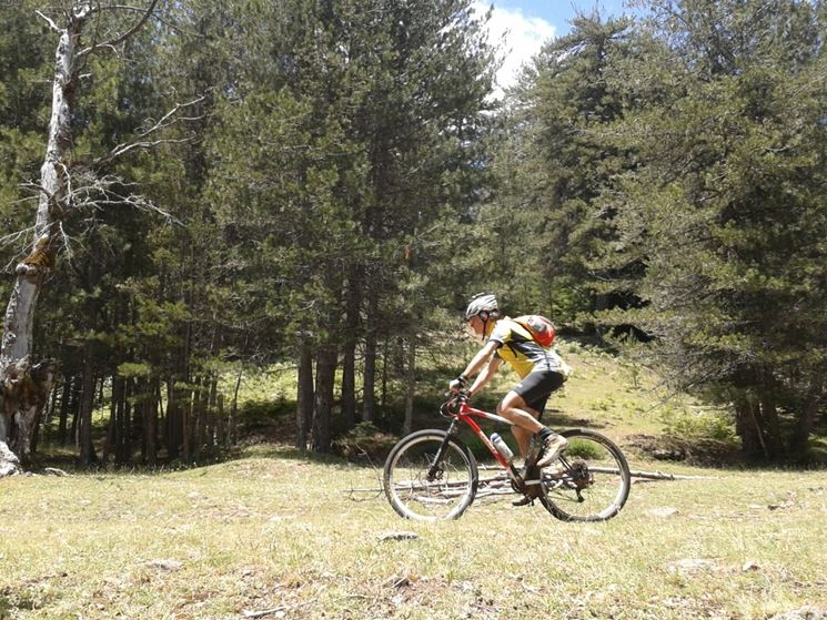 percorso per mountain bike